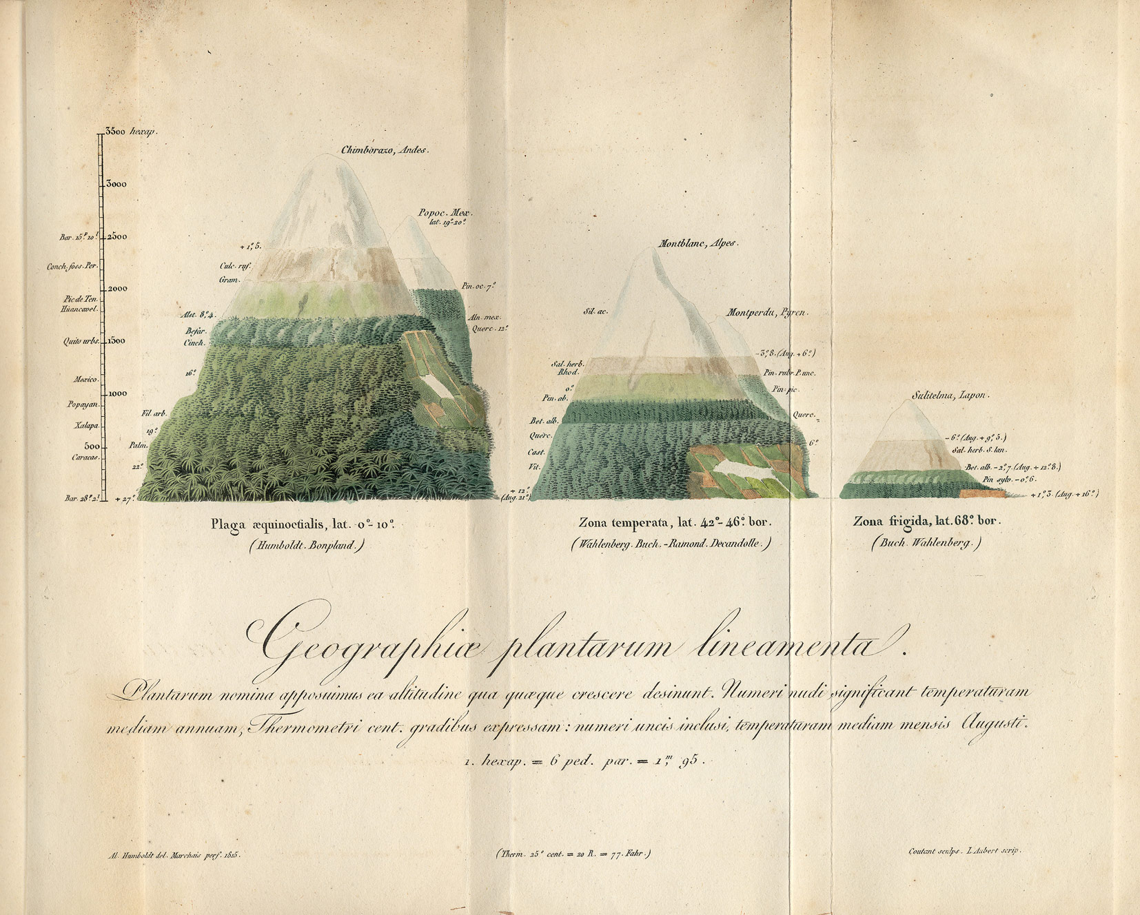 Geographiae plantarum lineamenta