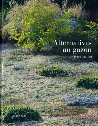 Alternatives au gazon