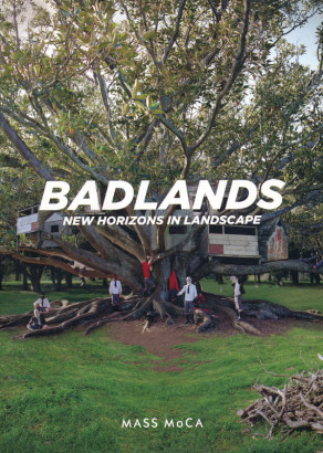 Badlands new horizons in landscape
