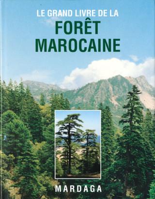 Forêt Marocaine