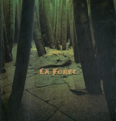 La forêt, la grotte