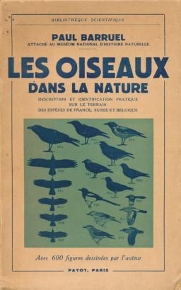Les oiseaux dans la nature