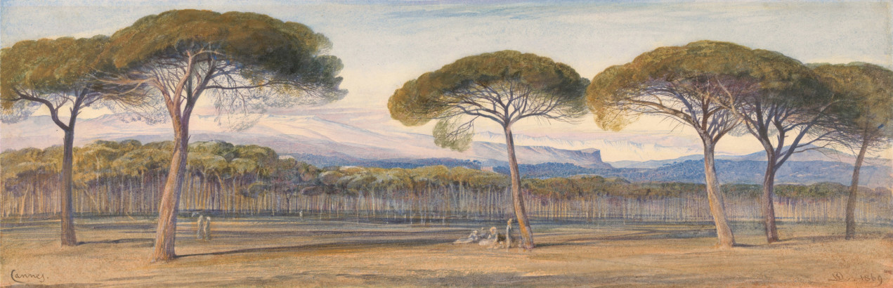 A View of the Pine Woods Above Cannes