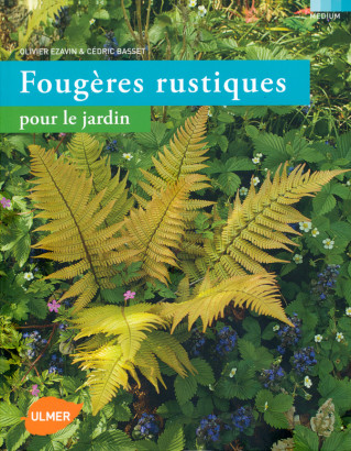 Fougères rustiques pour le jardin