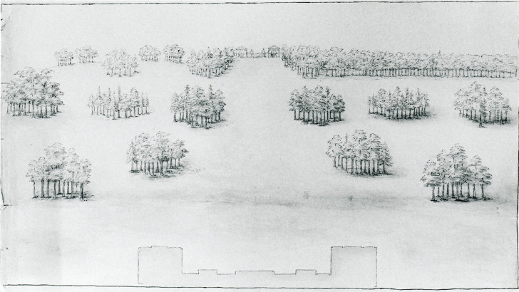 Holkham Hall, sketch of lawn with clumps of trees and a distant entry lodge