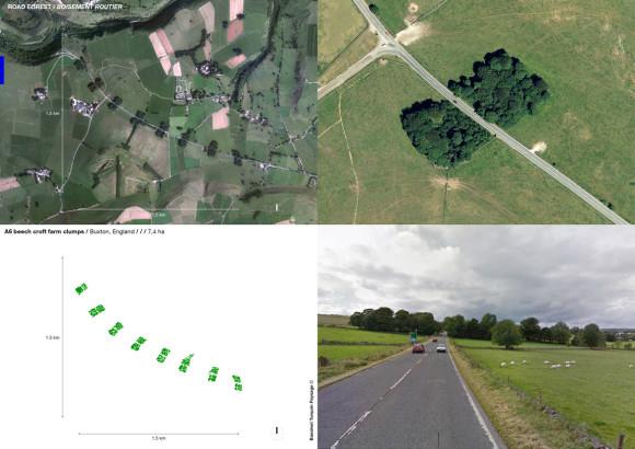 A6 beech croft farm clumps