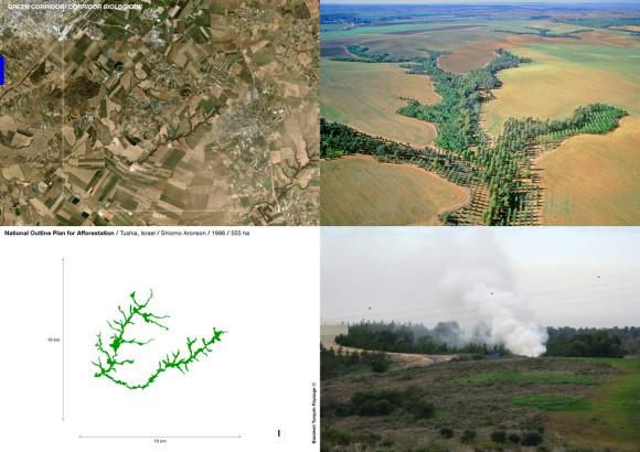 National Outline Plan for Afforestation