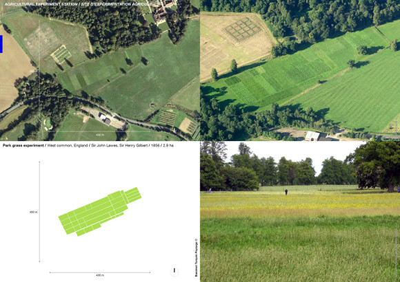 Park grass experiment