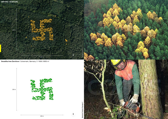 Swastika tree Zernikow