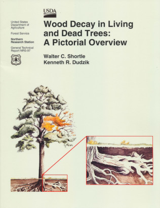 Wood decay in living and dead trees a pictural overview