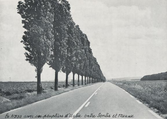 La N330 avec ses peupliers d'Italie entre Senlis et Meaux